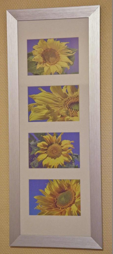 Sonnenblumenzimmer (1)